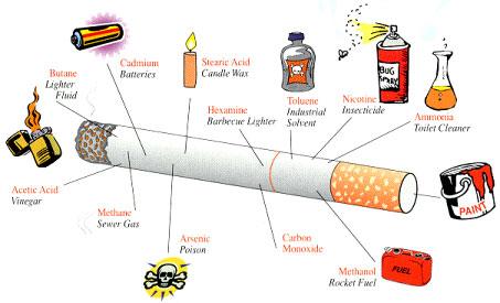 Cigarette Content
